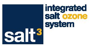 Salt 3